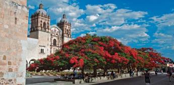 Oaxaca recibe sello de seguridad para viajes del WTTC