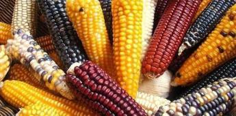 Empresas como Monsanto son un peligro para la humanidad