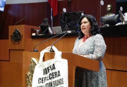 Recolecta Ayuntamiento de Tijuana 55 mil 200 toneladas de basura en el mes de diciembre