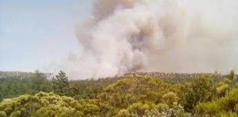Apoyan bomberos de Rosarito en sofocar los incendios en la sierra de Ensenada