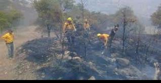 Apoya CONAFOR-Durango a Tecate y Ensenada en incendios forestales