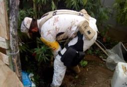 Ejercito descubre gran cargamento de droga entre la maleza
