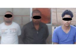 Incineraron cuatro plantíos de marihuana en Camalú