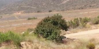 Atribuyen hallazgo de cuerpos a dos turistas desaparecidos