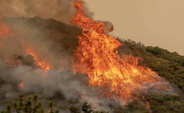Fiesta de revelación de género desata incendio en California