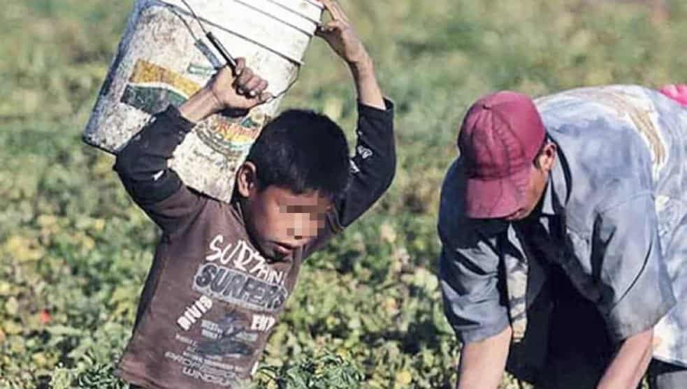 Niños mexicanos, satisfechos con sus vidas, asegura UNICEF