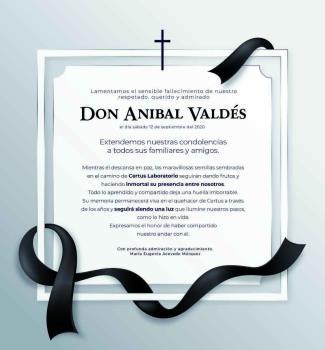 Don Anibal Valdés