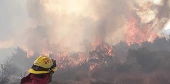 Brigadas forestales atienden incendios en Tecate