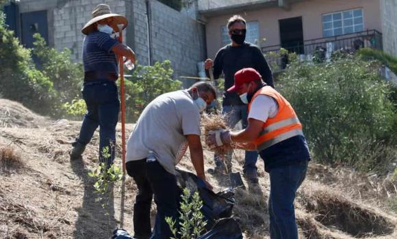 Ayuntamiento y vecinos se coordinan para limpiar la colonia Las Cumbre en la Jornada Sábado Verde