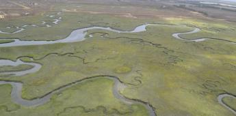 Continúan cerradas las reservas naturales de San Quintín
