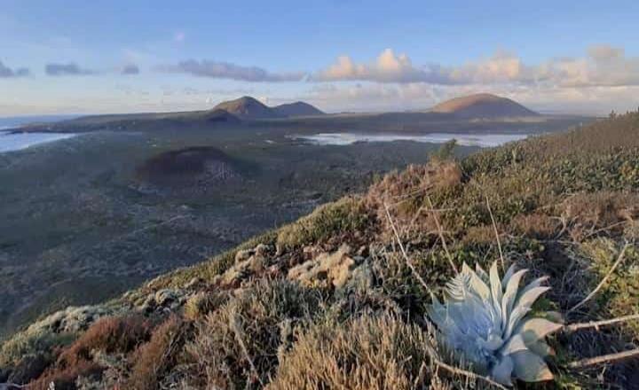Seis años de protección en Punta Mazo