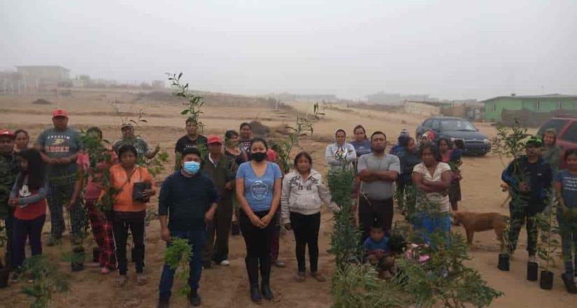 Realizan jornada de reforestación en San Quintín