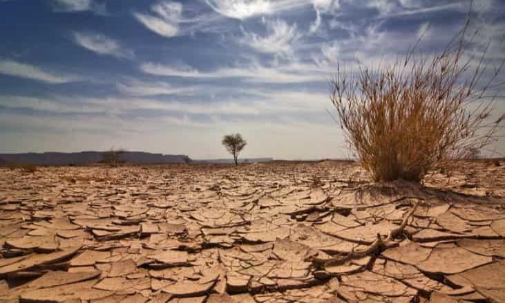 25% de las tierras en México se encuentran altamente degradadas
