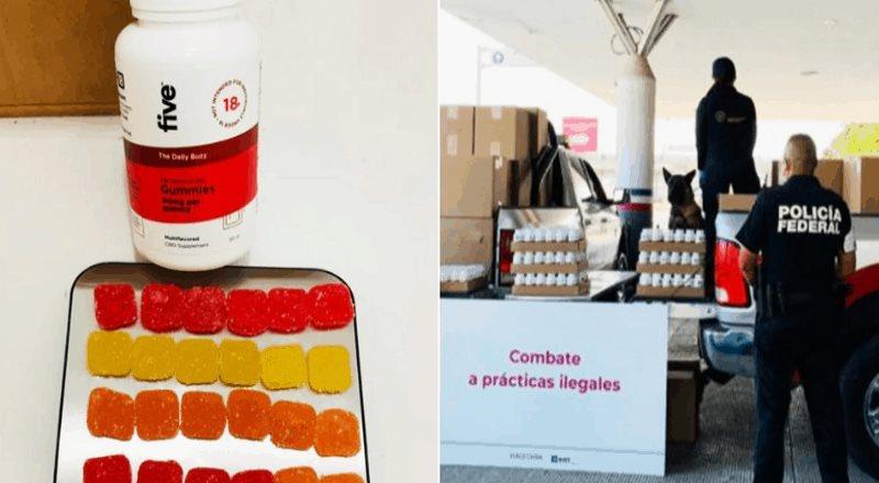 Decomisan en aduana de Tijuana más de 5 mil frascos de gomilocas