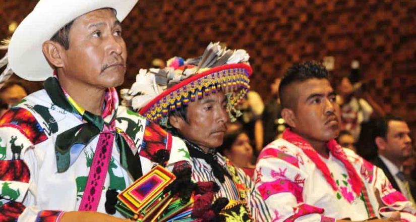 Jóvenes crean material en 30 lenguas indígenas contra Covid