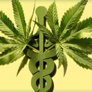 Marihuana sirve para el cáncer y Covid-19, dice experto