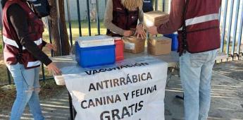 Brigada de vacunación antirrábica estará del 16 al 19 de febrero en Mexicali