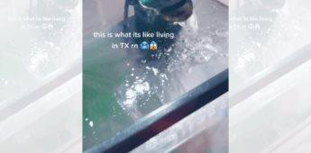 Pecera de una mujer en Texas queda congeladas tras las heladas