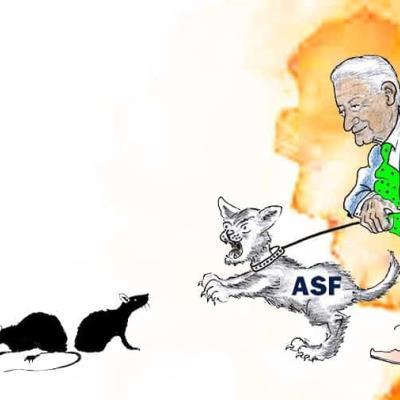 AMLO se escuda con la ASF