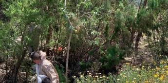 Colectivos de búsqueda encuentran durante brigada 3 cadáveres en la ciudad de Tijuana