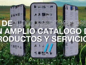 Bayer y Nucle presentan la primera plataforma de comercio electrónico para los agricultores mexicanos.