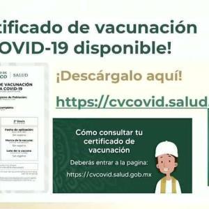 Este es el proceso para obtener el certificado de vacunación Covid.