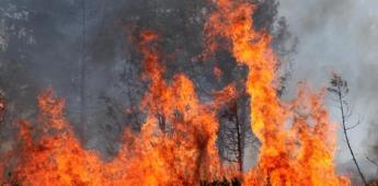 Envía México combatientes para apoyar en Canadá en incendios