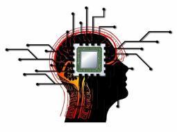 Implante cerebro-computadora, ya tiene permiso de uso en EU