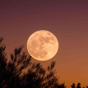 Hoy es Luna Llena de la Cosecha, ¿Qué es y qué representa?