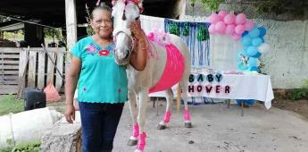 Hacen baby shower a una yegua en Yucatán