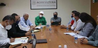 Campañas para controlar y erradicar plagas, deben realizarse en coordinación con productores: Secretaría del Campo de BC