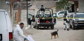 Encuentran dos cuerpos de dos masculinos en bolsas de plástico cerca de la delegación presa rural.